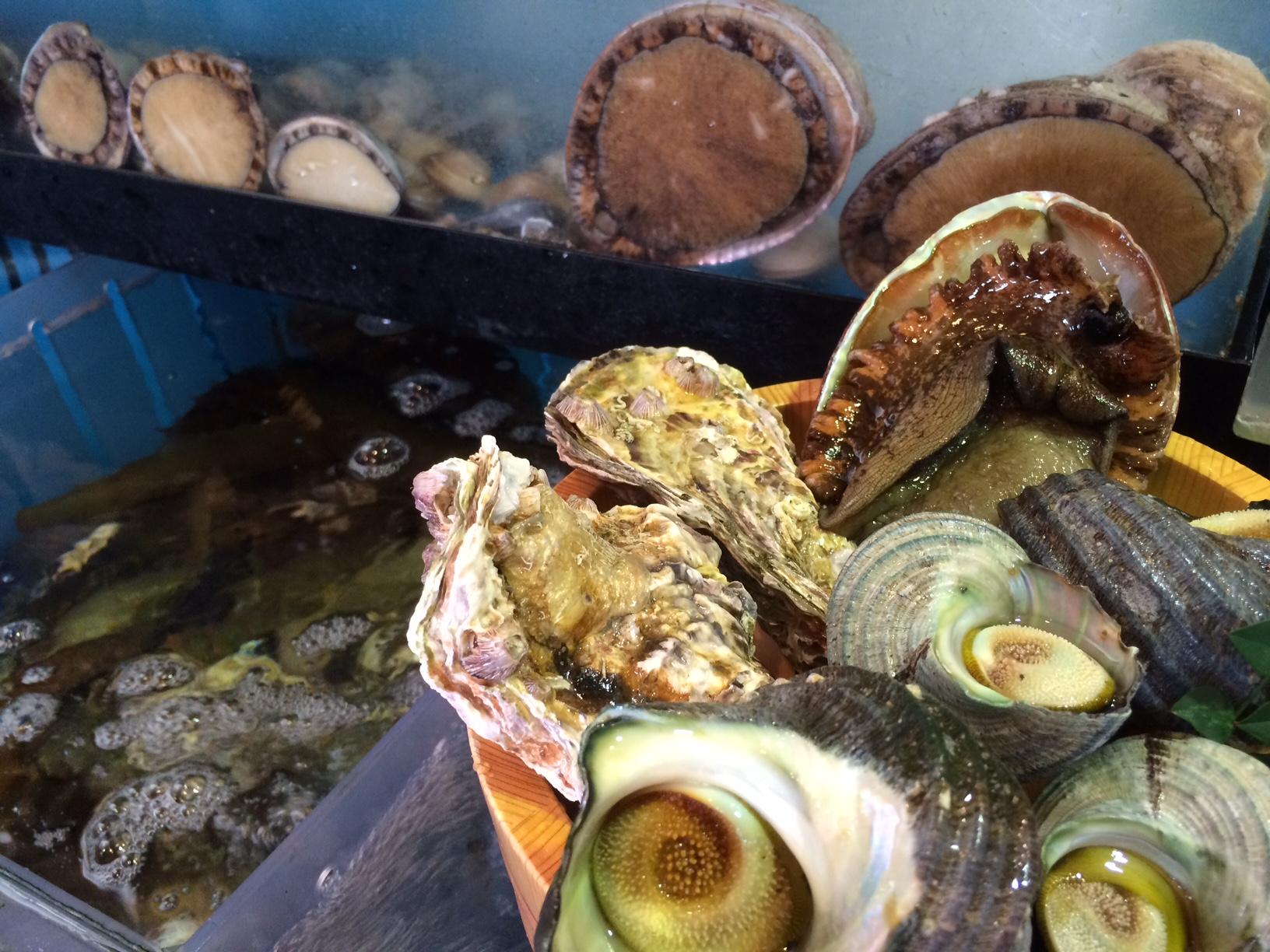 今が旬の地物の魚貝たち